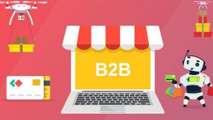 Magento 2  B2B 企业展示型开发